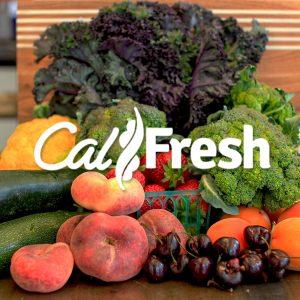 calfresh-product-thumbnail